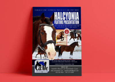 Halcyonia Feature Presentation