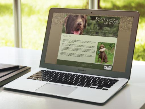 Southrock Labradors